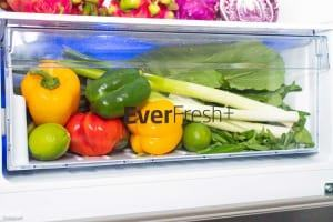3 tiêu chí khi chọn mua tủ lạnh