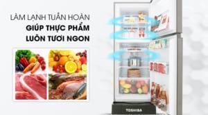Đánh giá Tủ lạnh Toshiba Inverter 194 lít GR-A25VS (DS)
