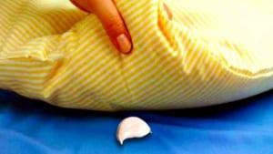 Công dụng khi đặt tỏi dưới gối ngủ