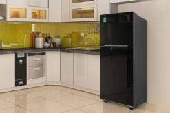 Đánh giá tủ lạnh Samsung Inverter 208 lít RT20HAR8DBU/SV